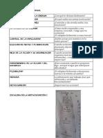 Funciones ejecutivas y cómo identificarlas.pdf