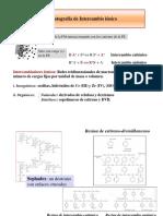 13.Int_ionico_y_exclusion.pdf