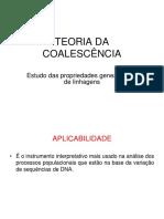 coalescencia_aula.pdf