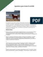 Cómo usar acupuntura para tratar la artritis canina (2).pdf