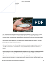 Dicas para a pesca do lambari.pdf