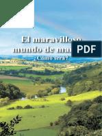 MARAVILLOSO.pdf