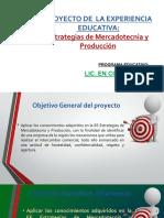 Lineamientos proyecto_EMYP.pdf