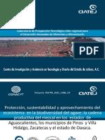 Laboratorio Ciatej.pdf