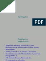 5. Andrógenos.ppt