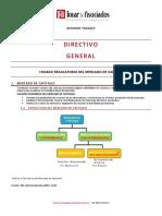 2. Resúmen Temario Directivo General.pdf