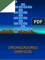 ORGANIZADORES GRAFICOS.pptx