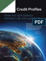 Ishka-CreditProfiles-Brochure2