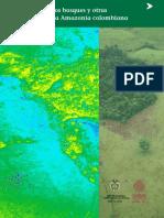 Monitoreo de bosques 2002.pdf