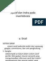 Syaraf dan Indra pada invertebrata.pptx