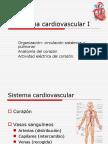EFD-18 El Sistema Cardiovascular I
