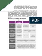 SERVICIO DE CONTROL SIMULTANEO.docx