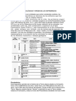 ERAS GEOLÓGICAS Y ORIGEN DE LOS VERTEBRADOS.docx