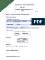GUÍA DEL PROCESO 001.docx