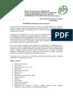 listeria guia.docx