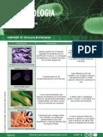 apostila-outras-doencas-bacterianas.pdf
