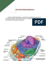011 Sistema de endomembranas y Organelos.pdf