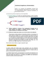 Funciones Inorgánicas y Nomenclatura.pdf