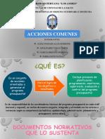 ACCIONES-COMUNES-enviar.pptx