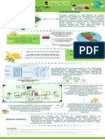 Green Illustration Butterfly Timeline Infographic.pdf