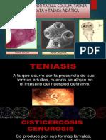 T. solium- PARASITOLOGIA.pptx