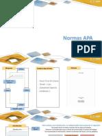 Indicaciones básicas Normas APA.pdf