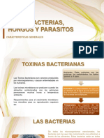 23. VIRUS, BACTERIAS, HONGOS Y PARASITOS.pptx