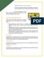 ADMINISTRACIÓN DEL ACTIVO LIQUIDO.docx