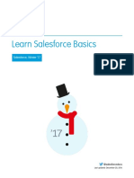 Salesforce Basics.pdf