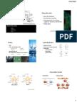BIO011 Organic Molecules