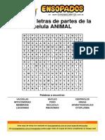 sopa-de-letras-de-partes-de-la-celula-animal.pdf