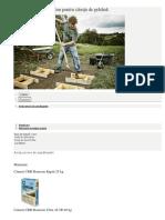 Realizare fundatie.docx