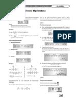 Álgebra_2.pdf