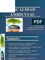 Fiscal Id Ad Ambiental Ppt