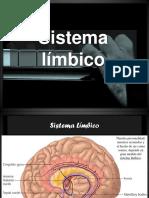 144572012-Sistema-limbico.pptx