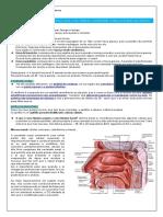 EDT VIAS AÉREAS SUPERIORES FISIOLOGIA.pdf