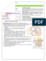 FISIOLOGIA RENAL.docx
