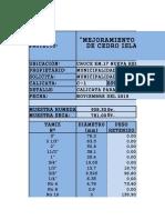 ESTUDIO DE SUELOS  CALICATA 01 CEDRO ISLA.xlsx