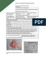 repaso examen FUNCIONALIDAD VISUAL Y AUDITIVA 2.docx
