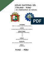 Informe-Salida-Laboratorio-Metalurgia.docx