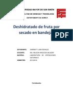 informe practico de secado.docx