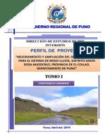CARATULA RIEGO 2019.pptx