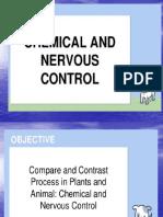 Nervous-System.pptx