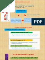 Diapositiva de Sociedades Irregulares