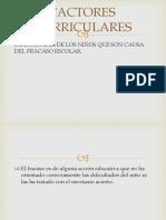 FACTORES CURRICULARES.pptx
