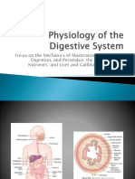 Physiology of the Digestive System (2).pptx