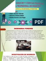 Exposicion Ingenieria Forense