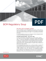 White Paper - BCM Regulatory Soup 01-2013