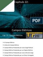 Cap 22 - Campo Eletrico.pdf