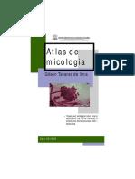 atlasdemicologia-GilsonTavares.pdf